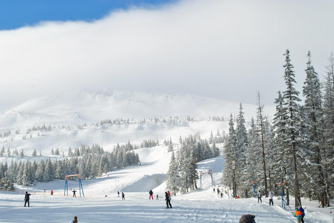 Активный отдых в Драгобрате зимой