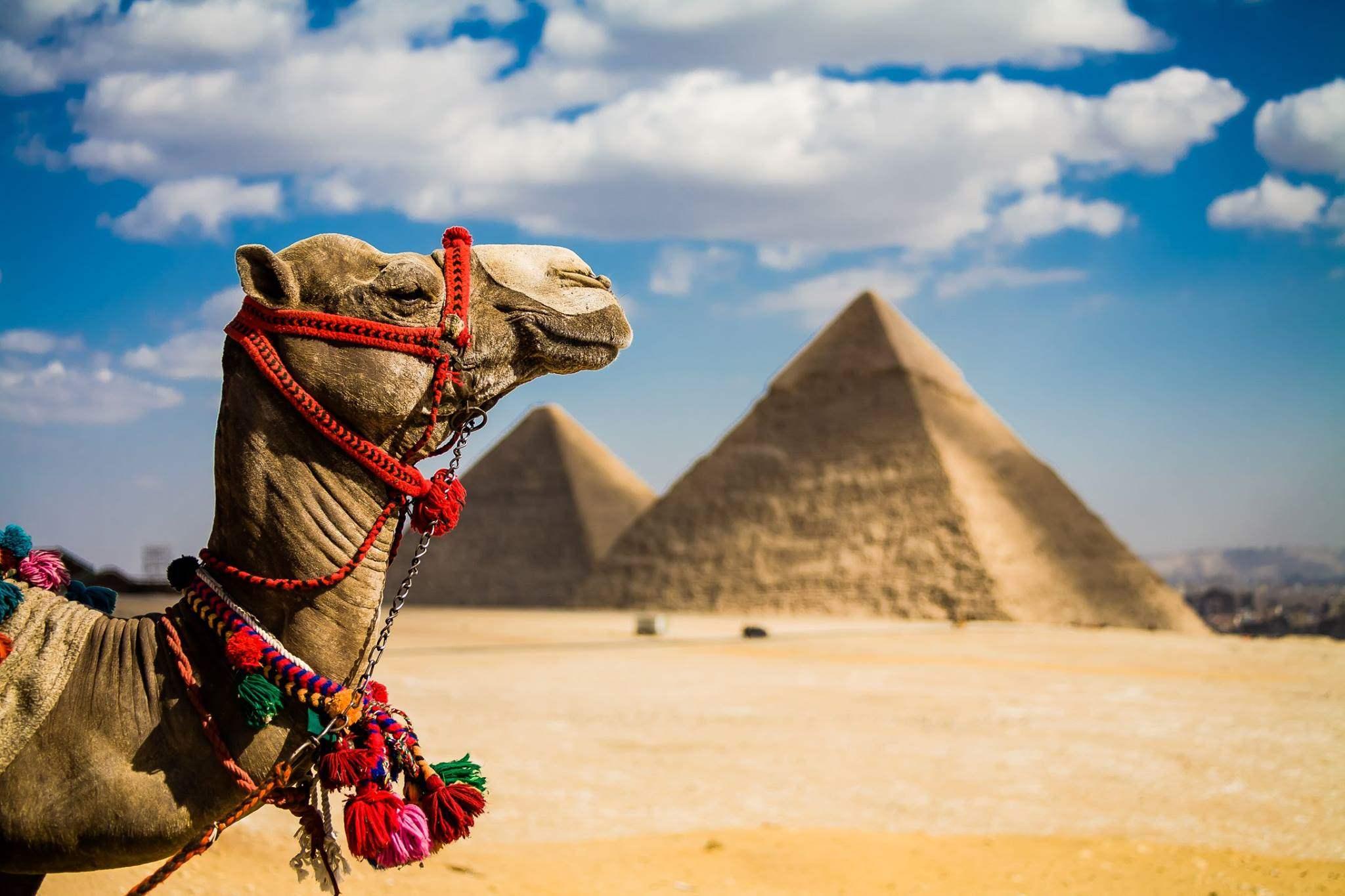 Де відпочити в Єгипті