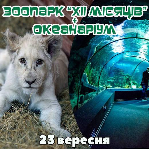Zoo okean 23