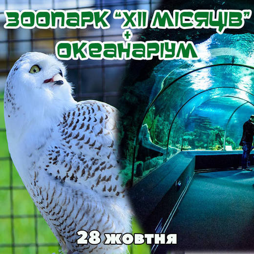Zoo okean 28
