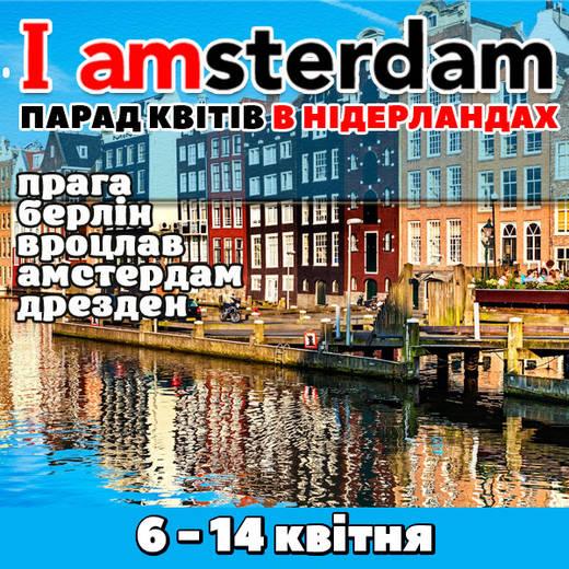 Amster1122