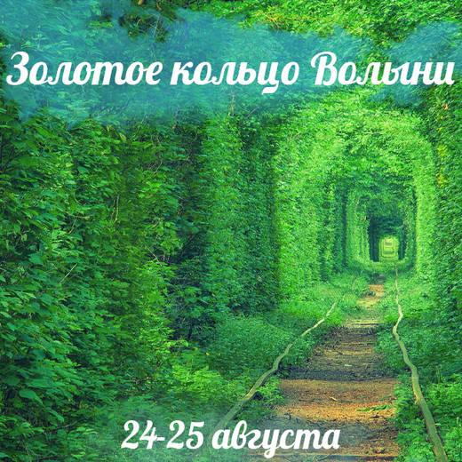%d0%97%d0%be%d0%bb%d0%be%d1%82%d0%b5 %d0%ba%d1%96%d0%bb%d1%8c%d1%86%d0%b5 %d0%92%d0%be%d0%bb%d0%b8%d0%bd%d1%96